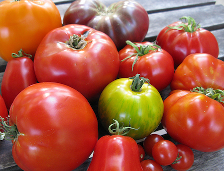 Sick of Seasonal Ingredients Endless Summer: Do Diners Tire of Tomatoes and Other Seasonal Ingredients?