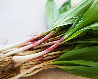 Ramps Trending on Recent OpenTable Reviews: Ramps