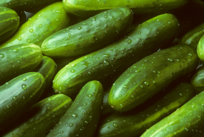 cucumbers Trending on Recent OpenTable Restaurant Reviews: Cucumbers