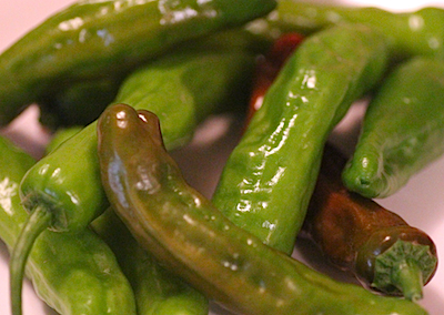 Shisito Trending on Recent OpenTable Restaurant Reviews: Shishito Peppers