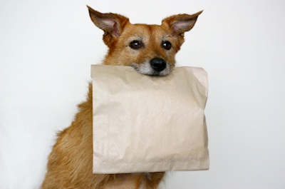 doggie bag How to Think Thin at Restaurants; Five Reasons to Dine Fine; Doggie Bag Etiquette + More News