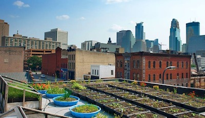 Bachelor Farmer Rooftop Roof to Table: 10 Rooftop Restaurant Gardens