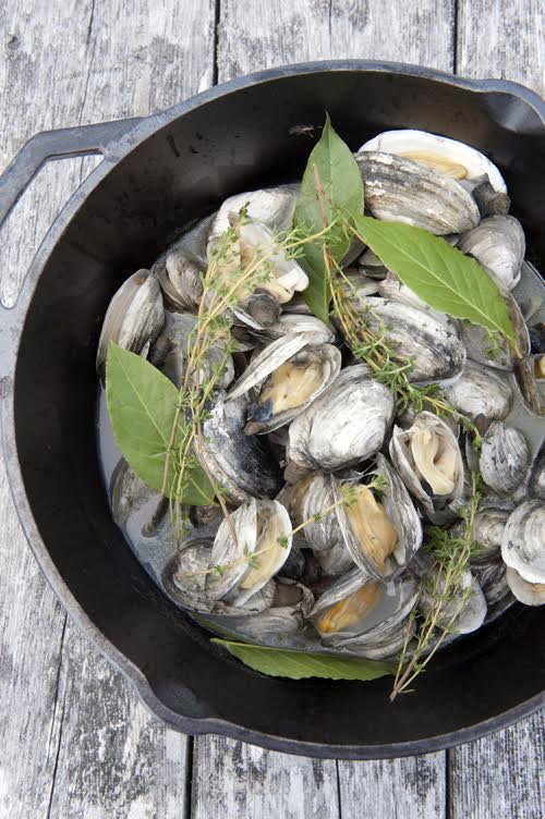 Dig This The Best Varieties Of Clams