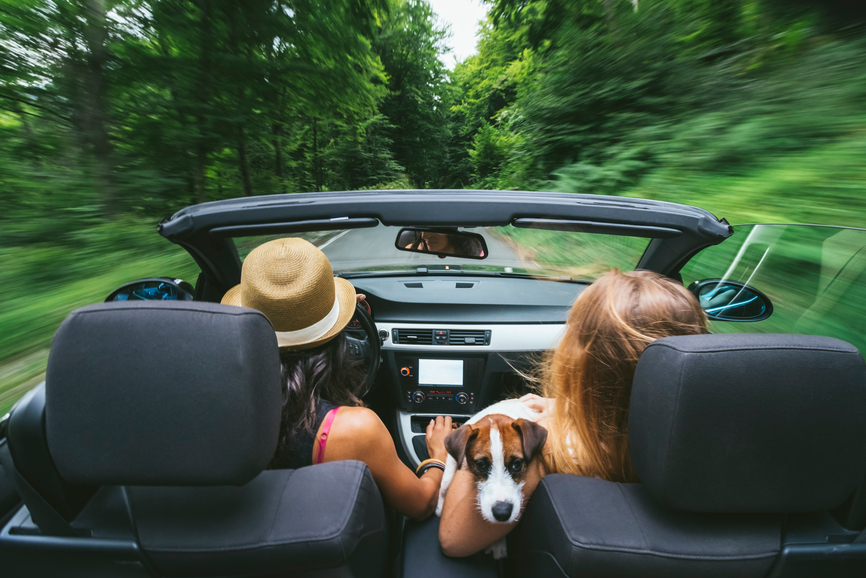 Tasty Tunes: A delicious summer road trip playlist
