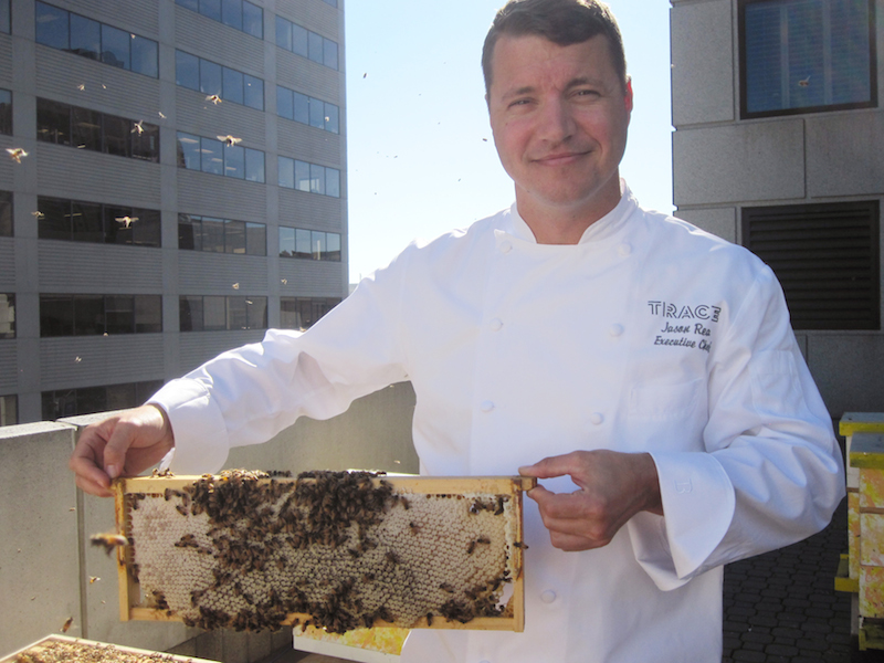 Restaurants and Bees