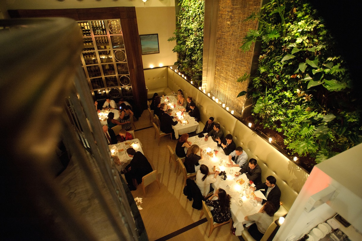 vertical gardens in restaurants