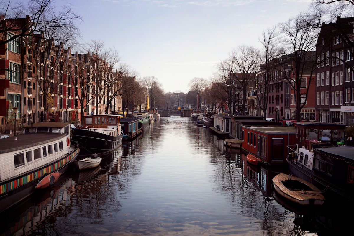 dine like a local in amsterdam