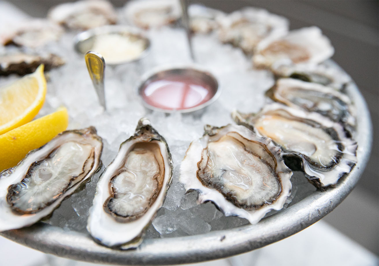 Tray of shucked oysters on ice