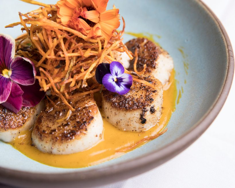 Where to Celebrate Special Occasions at Philadelphia and New Jersey Restaurants